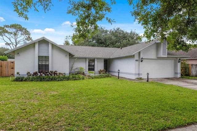3819 Stonehaven Road, Orlando, FL 32817 (MLS #O5943273) :: Pepine Realty