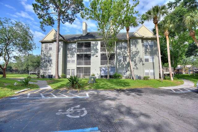 6172 Westgate Drive #203, Orlando, FL 32835 (MLS #O5943309) :: Century 21 Professional Group