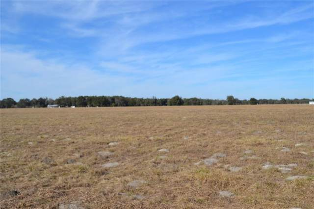 Cr 489, Lake Panasoffkee, FL 33538 (MLS #O5943317) :: Realty One Group Skyline / The Rose Team