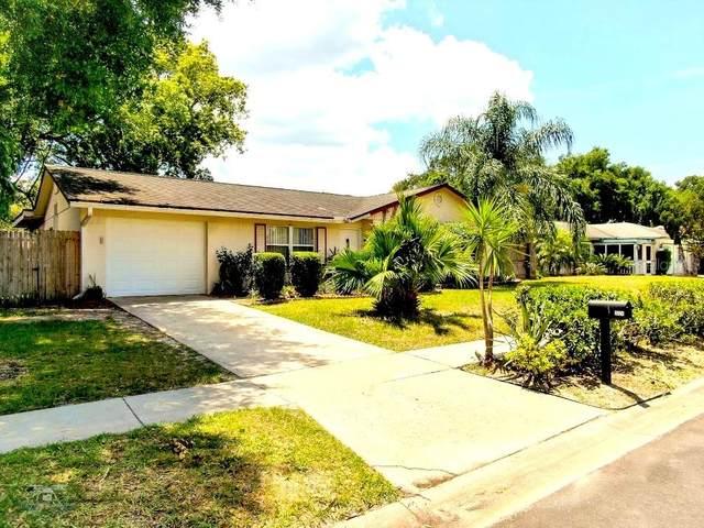 3224 Timothy Street, Apopka, FL 32703 (MLS #O5943392) :: Burwell Real Estate