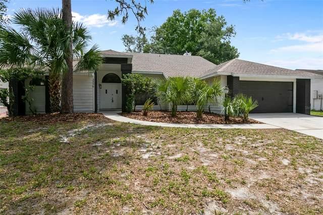 3363 Paisley Circle, Orlando, FL 32817 (MLS #O5943642) :: Visionary Properties Inc