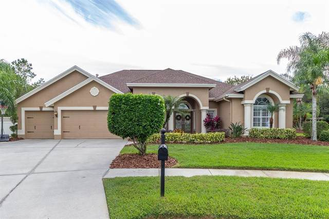 27740 Water Ash Drive, Wesley Chapel, FL 33544 (MLS #O5943655) :: Griffin Group