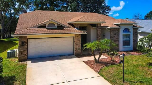 7248 Bottle Brush Drive, Spring Hill, FL 34606 (MLS #O5943747) :: Rabell Realty Group