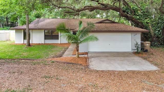 207 Sunrise Lane, Eustis, FL 32726 (MLS #O5943799) :: The Kardosh Team