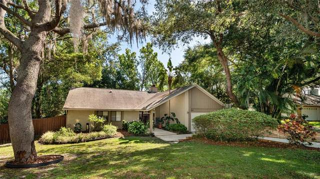 3806 Winderlakes Drive, Orlando, FL 32835 (MLS #O5943813) :: Team Borham at Keller Williams Realty