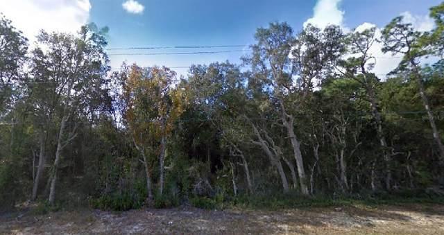 SE 180TH, Ocklawaha, FL 32179 (MLS #O5943869) :: Everlane Realty