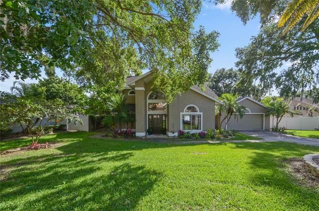 703 E Lakeshore Drive, Ocoee, FL 34761 (MLS #O5944108) :: Zarghami Group
