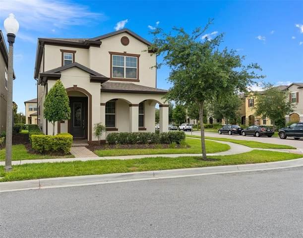 14107 Lakeview Park Road, Winter Garden, FL 34787 (MLS #O5944109) :: Positive Edge Real Estate