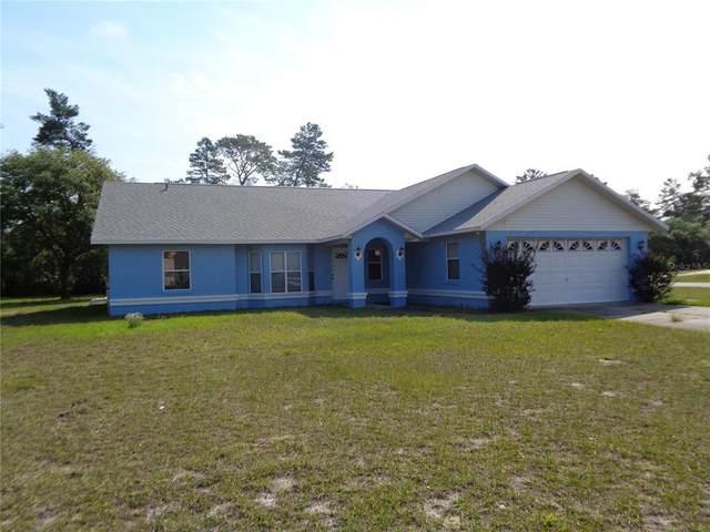 17263 SW 36TH AVENUE Road, Ocala, FL 34473 (MLS #O5944186) :: Southern Associates Realty LLC