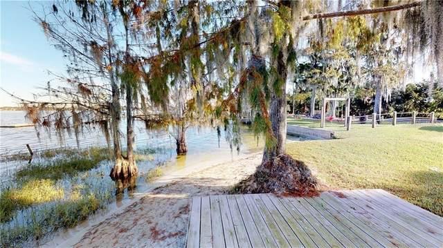 10430 Lake Cottage Lane, Orlando, FL 32836 (MLS #O5944368) :: Premium Properties Real Estate Services