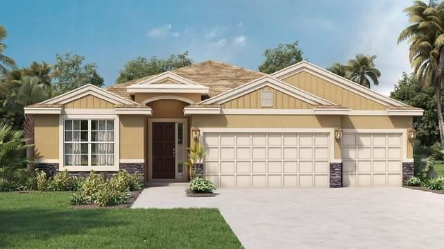 430 Cavesson Street, Apopka, FL 32712 (MLS #O5944741) :: Team Pepka