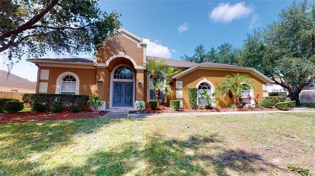 11018 Creighton Drive, Orlando, FL 32817 (MLS #O5944759) :: Team Borham at Keller Williams Realty