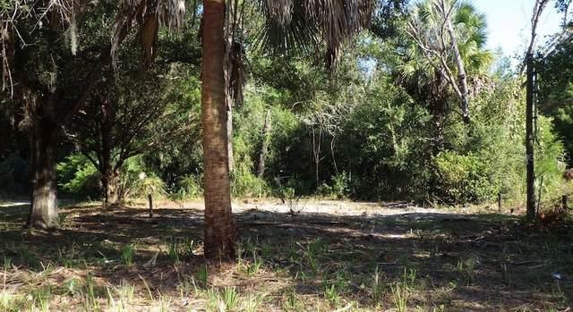 6317 W Mango Lane, Crystal River, FL 34429 (MLS #O5944760) :: Gate Arty & the Group - Keller Williams Realty Smart