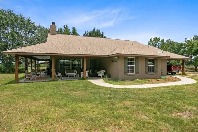 33830 Grand Champion Lane, Eustis, FL 32736 (MLS #O5944852) :: Premium Properties Real Estate Services