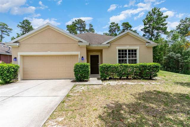 3329 Sorrel Court, Deltona, FL 32725 (MLS #O5944855) :: Team Borham at Keller Williams Realty