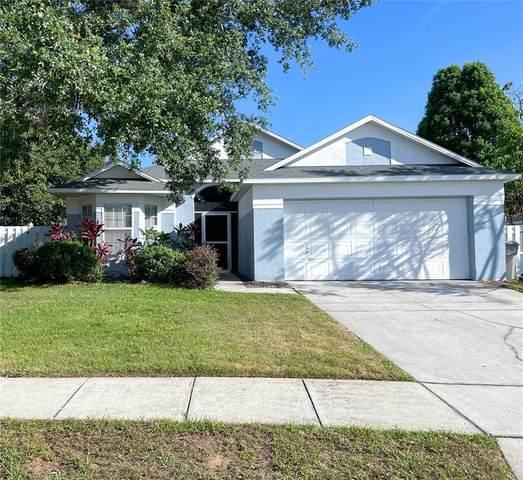 258 Lake Doe Boulevard, Apopka, FL 32703 (MLS #O5944865) :: RE/MAX Premier Properties