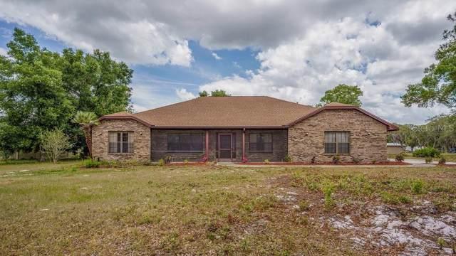 5925 Ingram Road, Apopka, FL 32703 (MLS #O5945112) :: RE/MAX Premier Properties