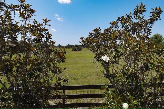 20902 Camphortree Road, Eustis, FL 32736 (MLS #O5945158) :: RE/MAX Local Expert