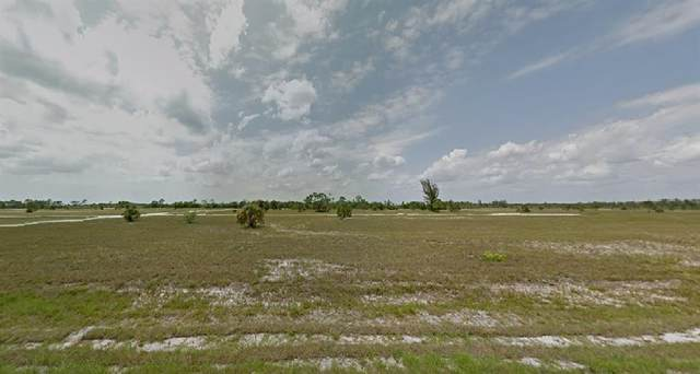 14370 Sailor Court, Placida, FL 33946 (MLS #O5945386) :: The Hustle and Heart Group