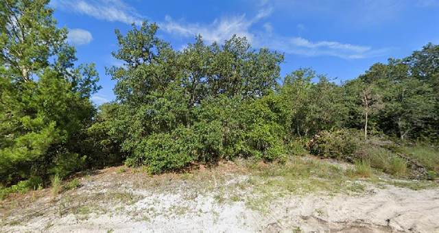 Park Lake Drive, Deland, FL 32724 (MLS #O5945458) :: Armel Real Estate