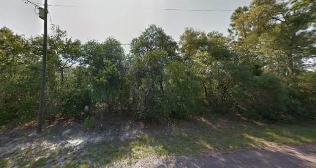 9198 N Justa Drive, Citrus Springs, FL 34433 (MLS #O5945463) :: Kelli and Audrey at RE/MAX Tropical Sands