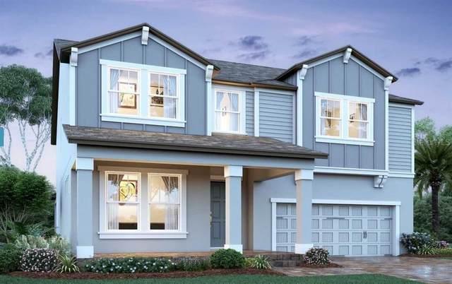 940 Hull Island Drive, Oakland, FL 34787 (MLS #O5945718) :: Everlane Realty