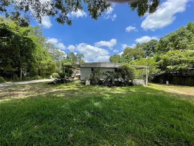 3682 County Road 230, Wildwood, FL 34785 (MLS #O5945769) :: Zarghami Group