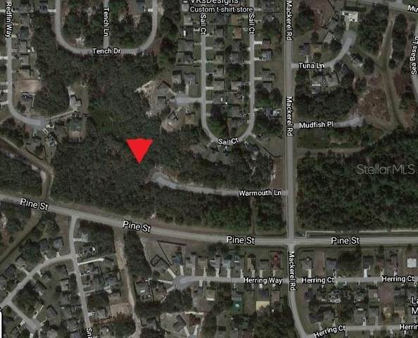 121 Warmouth Lane, Poinciana, FL 34759 (MLS #O5945995) :: The Hustle and Heart Group
