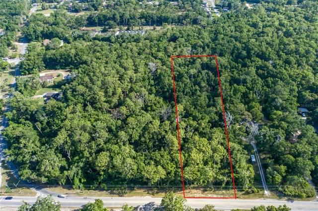 321 W Kelly Park Road, Apopka, FL 32712 (MLS #O5946005) :: Armel Real Estate