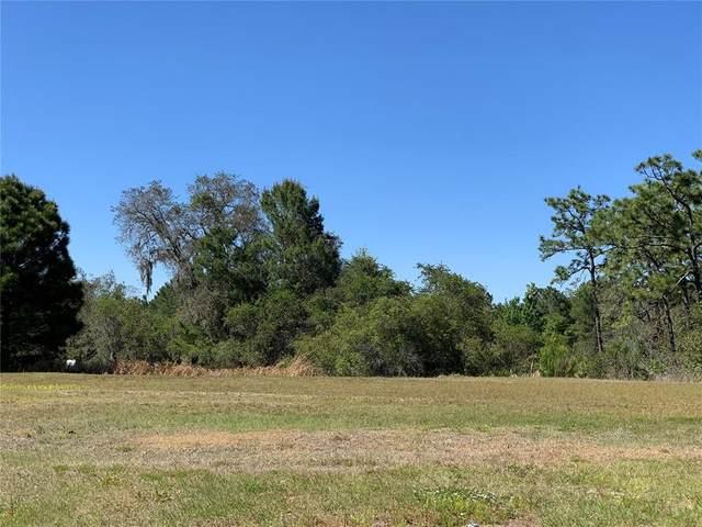 Fairview Circle, Kissimmee, FL 34747 (MLS #O5946171) :: Armel Real Estate
