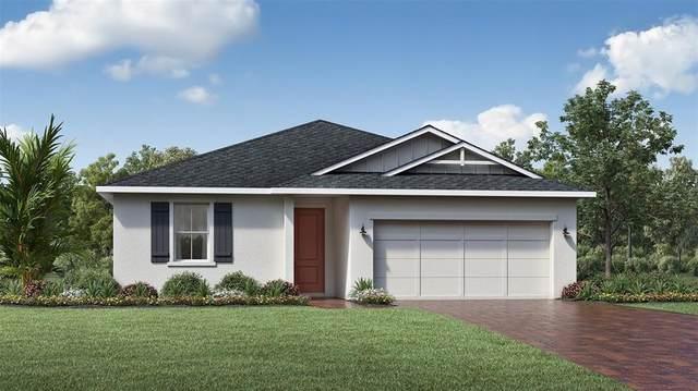 3393 Bluff Oak Lane, Sanford, FL 32771 (MLS #O5946174) :: Vacasa Real Estate