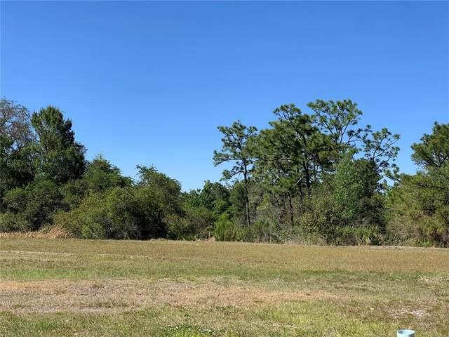 Fairview Circle, Kissimmee, FL 34747 (MLS #O5946197) :: Armel Real Estate