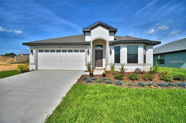 921 Vienna Drive, Winter Haven, FL 33884 (MLS #O5946240) :: Rabell Realty Group