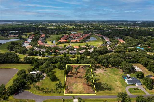 Kimberlee Lane, Kissimmee, FL 34744 (MLS #O5946320) :: Armel Real Estate