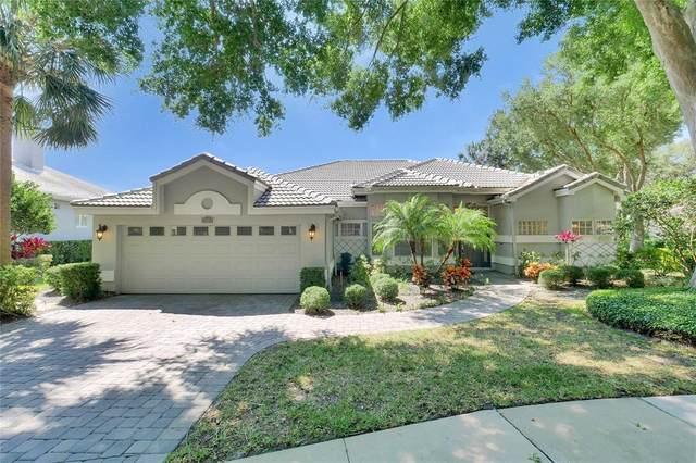 386 Devon Place, Lake Mary, FL 32746 (MLS #O5946340) :: Alpha Equity Team