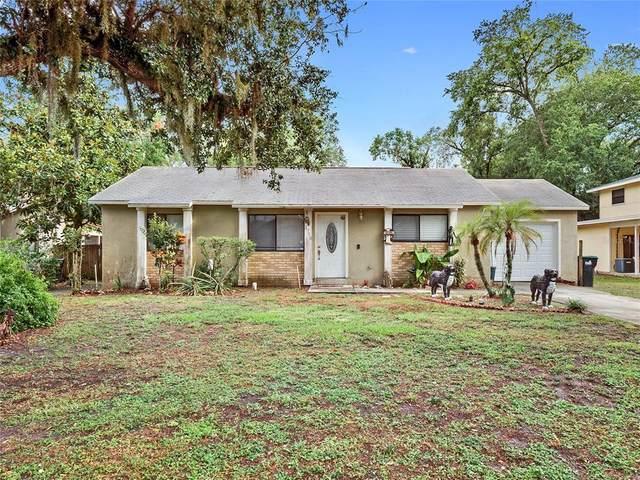 3710 Winona Drive, Orlando, FL 32812 (MLS #O5946469) :: Your Florida House Team