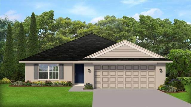 917 Vienna Drive, Winter Haven, FL 33884 (MLS #O5946505) :: Rabell Realty Group