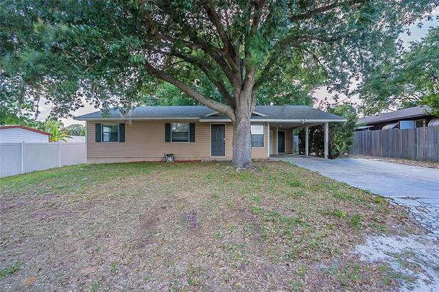 725 Virginia Avenue, Tavares, FL 32778 (MLS #O5946572) :: Everlane Realty