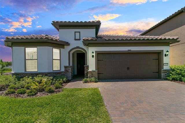 11167 Lemon Lake Boulevard, Orlando, FL 32836 (MLS #O5946588) :: Young Real Estate