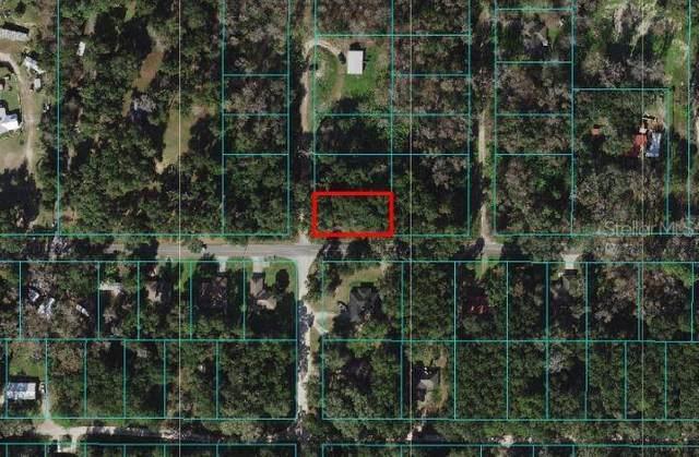 TBD SE 41 Terrace, Belleview, FL 34420 (MLS #O5946593) :: Zarghami Group