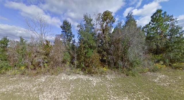 Brookside Street, Chipley, FL 32428 (MLS #O5947103) :: The Robertson Real Estate Group