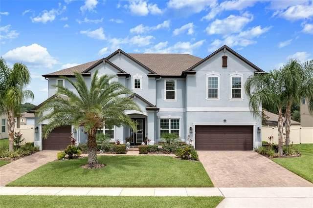 3072 Pinenut Drive, Apopka, FL 32712 (MLS #O5947137) :: Young Real Estate