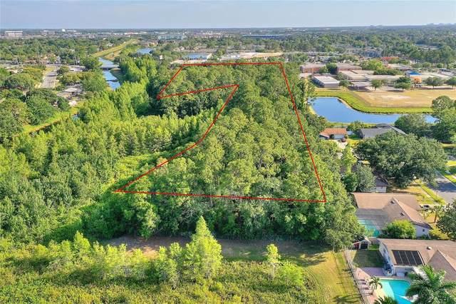 4033 Orkney Avenue, Orlando, FL 32809 (MLS #O5947159) :: Premium Properties Real Estate Services