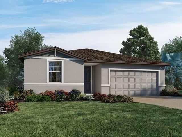 38830 Opal Willow Lane, Zephyrhills, FL 33540 (MLS #O5947429) :: Zarghami Group