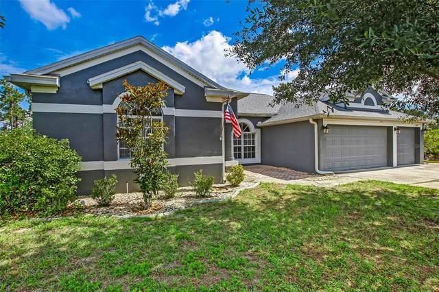 19311 Palmview Street, Orlando, FL 32833 (MLS #O5947891) :: Everlane Realty
