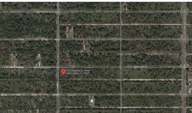 923 Gaillardia Drive, Indian Lake Estates, FL 33855 (MLS #O5948213) :: Armel Real Estate