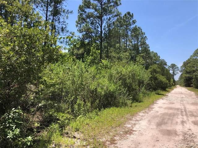 8961 Freedom Road, Mims, FL 32754 (MLS #O5948244) :: Cartwright Realty
