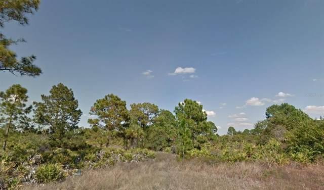 559 Beach Avenue S, Lehigh Acres, FL 33974 (MLS #O5948855) :: The Robertson Real Estate Group