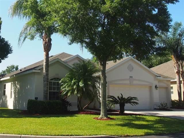3483 Capland Avenue, Clermont, FL 34711 (MLS #O5948887) :: Stellar Home Sales
