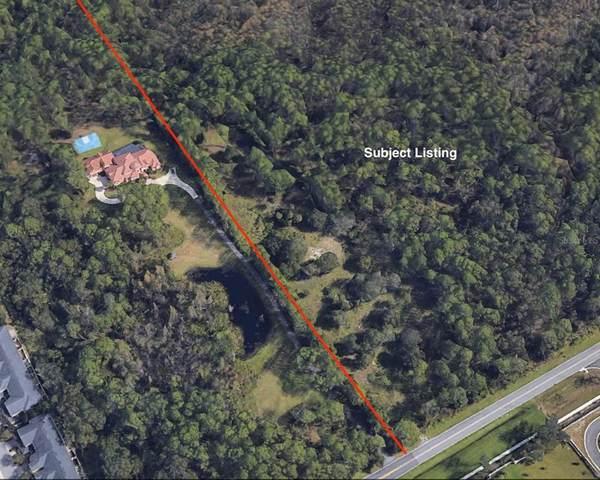 13955 Reams Road, Windermere, FL 34786 (MLS #O5949177) :: Young Real Estate